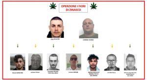 Lomellina, scoperte le serre dove si coltivava la droga: nove arrestati