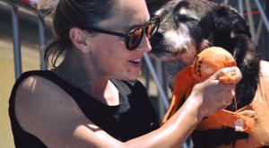 Rimane uccisa nel tentativo di salvare i suoi cani