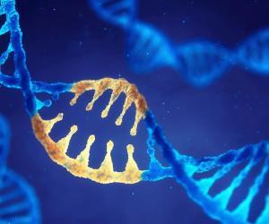 Creati batteri di Escherichia coli con un genoma artificiale