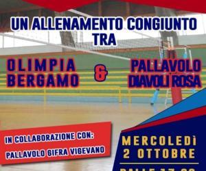 Volley: oggi a Gambolò allenamento congiunto tra Olimpia Bergamo e Diavoli Rosa