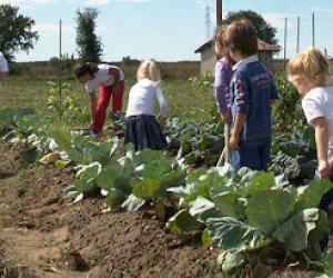 Lezioni scolastiche all'aperto nelle fattorie didattiche della Lombardia