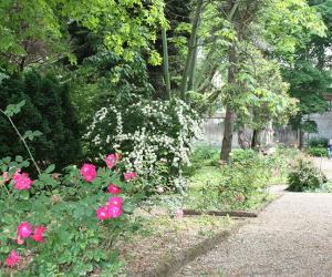 La bellezza incontra la natura negli Orti Botanici della Lombardia