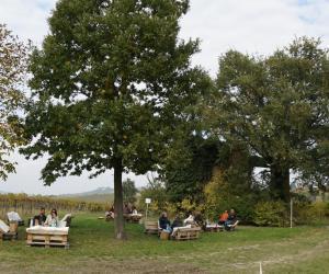 Al via l'Autunno Pavese Wine Tour