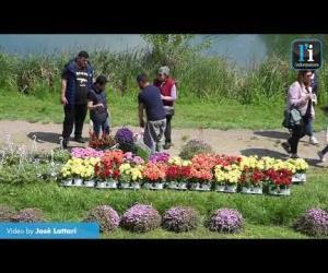 """Gravellona, inaugurata la settima edizione de """"Il fiore e il lago"""""""