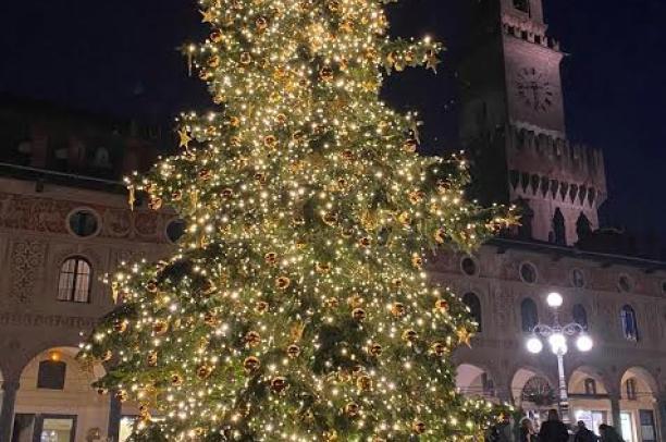 Vigevano, illuminato l'albero di Natale in piazza Ducale